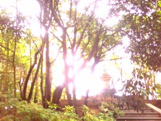 唐招提寺に行きました